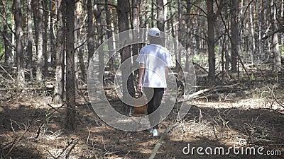 Junge Frauen sammeln an sonnigen Tagen Pilze im Wald Pilzpflücken, Pilzsaison Mädchen mit Körbchen stock video footage