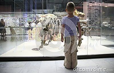 Junge im Museum