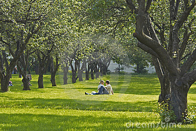 Junge Paare im Park