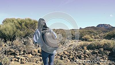 Junge Touristinnen, die an einem sonnigen Tag auf den Gipfel des Berges wandern stock video