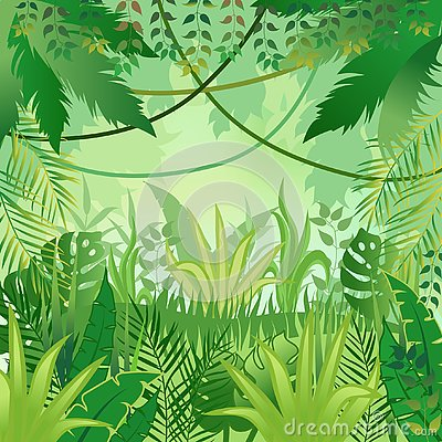 Free Jungle Background. Trees And Plants. Vector Illustration Stock Photos - 127485663