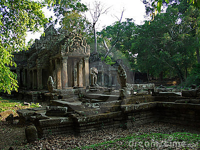 In jungle of Cambodia