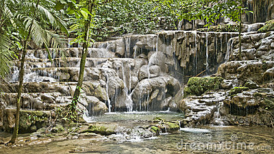 Jungle-cascade