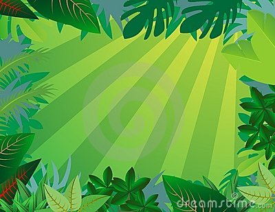 Jungle forest background