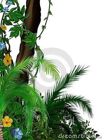 Free Jungle Vegetation Stock Photo - 7094350