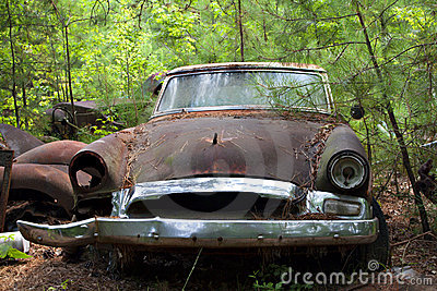 Junk yard car in trees and weeds