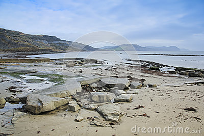 Jurassic coast beach lyme regis dorset uk