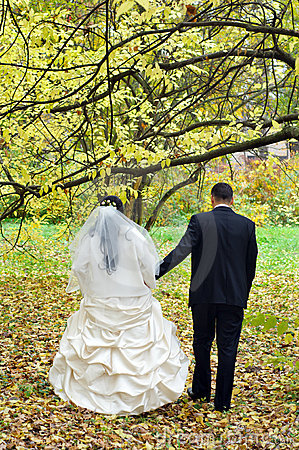 Free Just Married Couple Stock Photos - 7056763