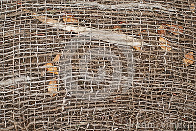 Jute and Natural garden background