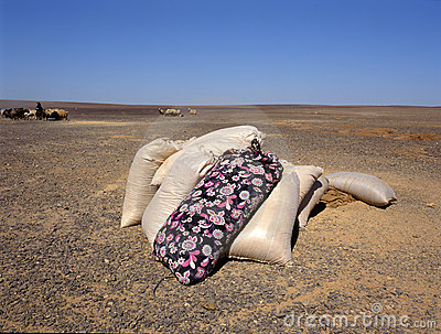 Jute sacks with food in the desert