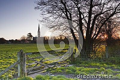 Jutrzenkowy Salisbury