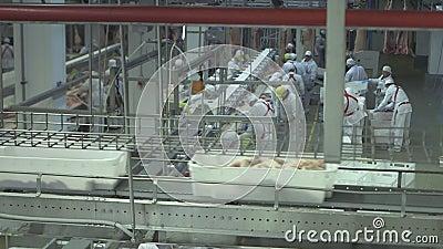 Köttfabrik 2 lager videofilmer