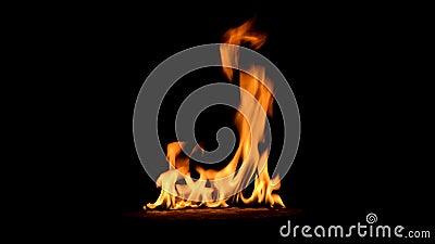 4K从开始的长的灼烧的火到几乎灭绝 股票视频