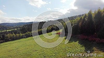4K无人机拍摄森林和山脉 股票视频
