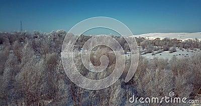 """4K †""""antena strzał drzewa zakrywający w śniegu mrozie na zimnym zima dniu zbiory"""