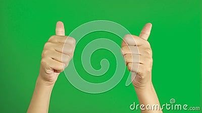 4K γυναικεία χέρια που δείχνουν δύο αντίχειρες προς τα επάνω και στραμμένα στο αντίγραφο χώρο απομονωμένο στο πράσινο φόντο του π φιλμ μικρού μήκους