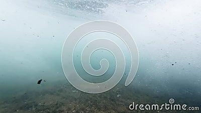 4k υποβρύχιο βίντεο κύματος ωκεανού που κυλάει και σπάει στον κοραλλιογενή ύφαλο απόθεμα βίντεο