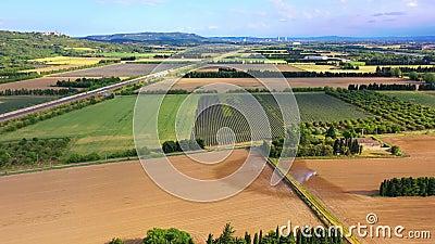 4K AÉRIEN : Vol au-dessus du champ Lavender Coucher de soleil ou lever de soleil paysage aérien d'interminables champs de lavande banque de vidéos