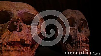 4K Halbleiter-Hintergrundkonzept Horror-Schädel mit im dunklen Ort dekoriert für Halloween-Party mit Horrorfilm-Effekt stock video