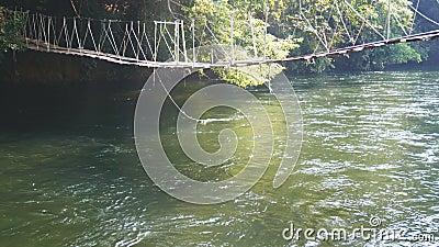 4K le pont accrochant fait avec de vieux panneaux des bois pour passer au-dessus d'une petite rivière avec le matin exposent au s banque de vidéos