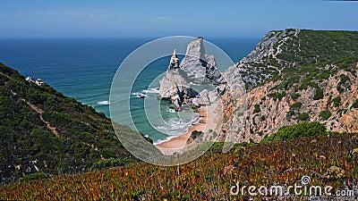 4 K panoramisk syn på stranden Praia da Ursa i Sintra, Portugals kustlinje med vissa plantor i förgrund stock video