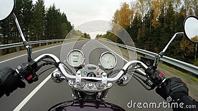 4K Szybka motocykl jazda na pięknej zalesionej drodze, szeroki punkt widzenia jeździec Klasyczny krążownik, siekacz na zawsze/! zdjęcie wideo