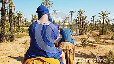 4K video van kameelcaravan in de woestijn van de Sahara, Marokko Mensen die in blauw Bedouin ritkamelen in zandduinen kleden daar stock videobeelden