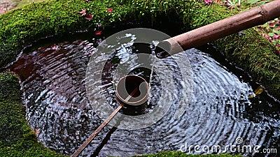 4K Wasserbecken am Eingang des Shinto-Schrein stock footage