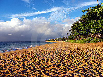 Kaanapali beach in Maui Hawaii