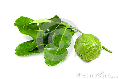 Kaffir Lime and leaves isolated with clipping path