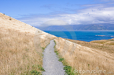 Kaikoura Peninsula Walkway, New Zealand