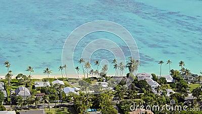 Kailua shore