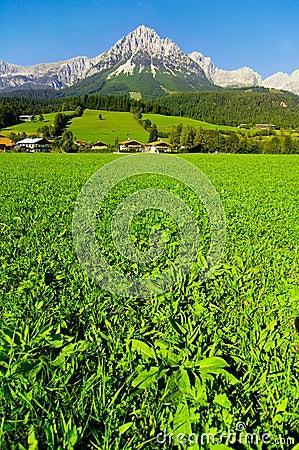 Kaisergebirge in Austria