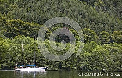 Kaledonischer Kanal Mit Segelboot Und Wald In Schottland
