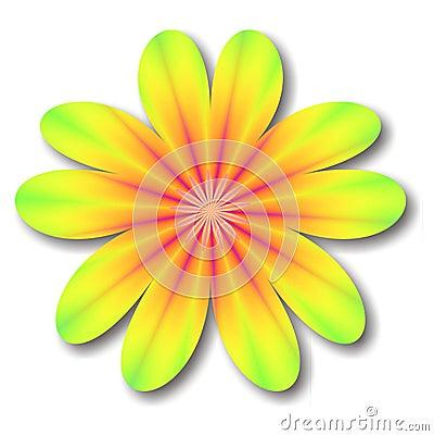 Free Kaleidoscope Flower Royalty Free Stock Image - 904426