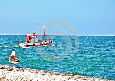 Kalk Bay Harbor Cape Town, South Africa