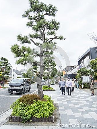 Kamakura główna ulica Obraz Editorial