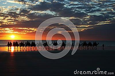 Kamel-Fahrsonnenuntergang-Seilzug-Strand