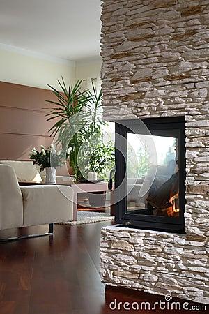 modernes wohnzimmer mit kamin lizenzfreie stockbilder - bild: 20856789, Hause ideen