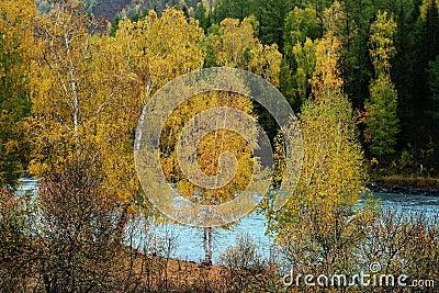 Kanas river
