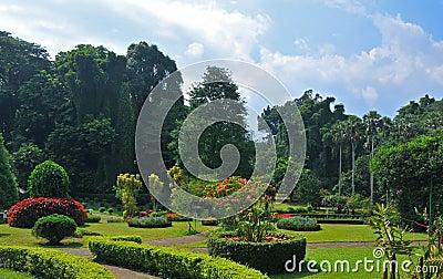 Kandy Royal Botanic Gardens (Sri Lanka, Asia)