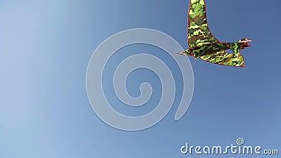 Kania unosi się w powietrzu 1 zbiory wideo