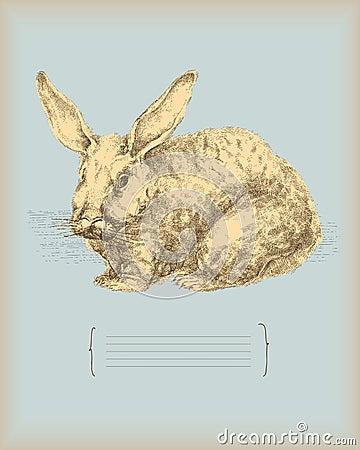 Kaninchenweinlesezeichnung