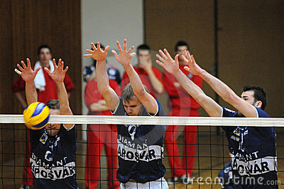 Kaposvar - Mladost Zagreb volleyball game Editorial Stock Photo