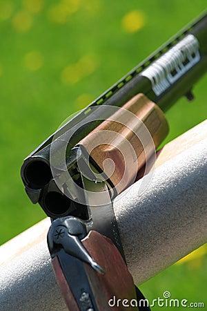 Karabinowy target2155_0_