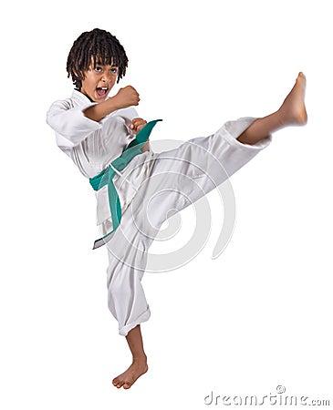 Free Karate Stock Photography - 7566162