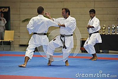 Karate, European Master Cup, Kata Bunkai Editorial Stock Image