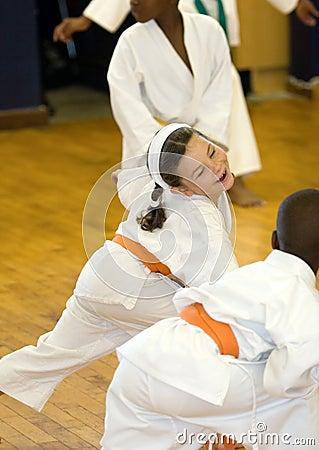 Free Karate Girl Royalty Free Stock Images - 1017389