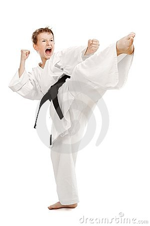 Free Karate Kick Stock Photo - 15917730