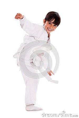 Free Karate Kid Royalty Free Stock Photo - 15318495